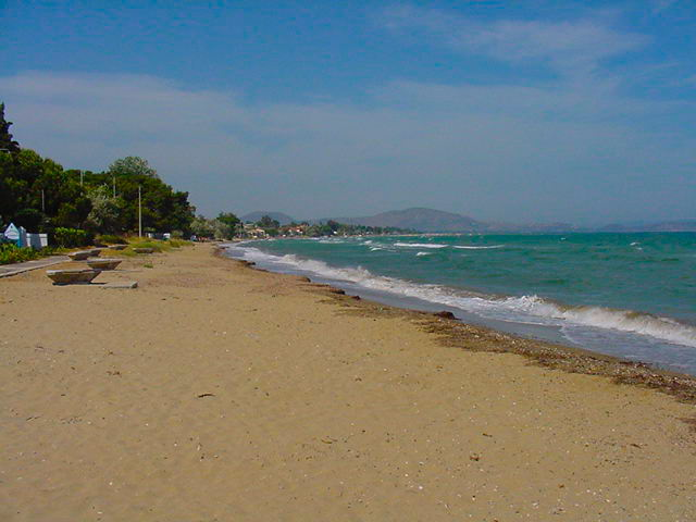 Rent a villa in Nea Makri on the beach with swimming pool