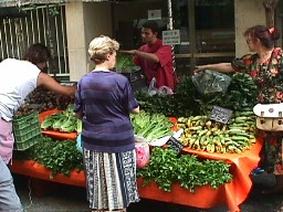 farmers market: lettuce, spinach, green leafy vegetables